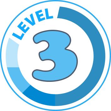 level-3jpg.jpg